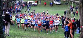 1er cross de Beaumont – 11 novembre 2019